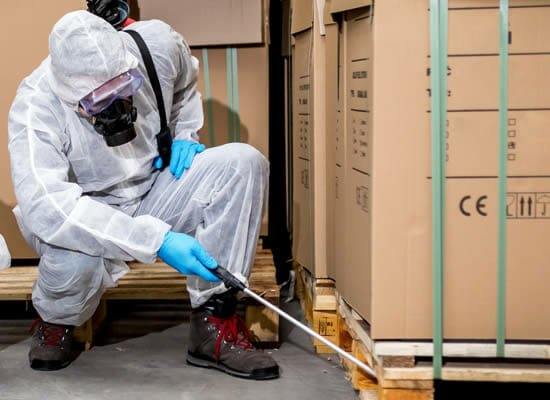 Commercial and Industrial Pest Treatments