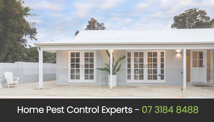 Eco Friendly Pest Control in Brisbane