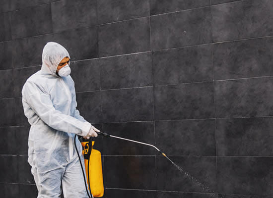 Contact Commercial Pest Control Experts