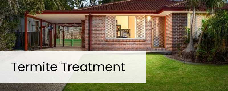 Chemical Termite Barrier Treatment